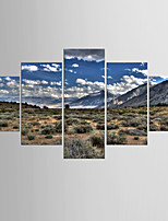Photographic Print Landscape Modern Realism,Five Panels Canvas Any Shape Print Wall Decor For Home Decoration