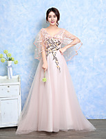 Formal Evening Dress Ball Gown V-neck Sweep / Brush Train Tulle with Appliques