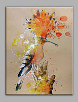 Hand-Painted Animal  Eurasian Hoopoe Ready To Hang  Modern One Panel Canvas Oil Painting For Home Decoration