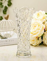 1 pcs Transparent Glass Vase