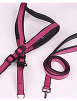 Dog Leash Adjustable/Retractable Training Stainless Steel