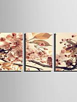 Floral/Botânico Moderno Estilo Europeu,3 Painéis Tela Vertical Impressão artística Decoração de Parede For Decoração para casa