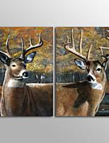 Toile Animal Classique Moderne,Deux Panneaux Toile Verticale Imprimer Art Décoration murale For Décoration d'intérieur