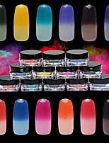 1PC Nail Art Temperature Powder Classic 12 Color The Gradient Powder