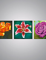 Stretched Canvas Blossom Flowers Painting Modern  Canvas Art for Wall Decoration