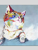 Oil Paintings Cat Style Canvas Material With Wooden Stretcher Ready To Hang Size60*60CM and 70*70CM .