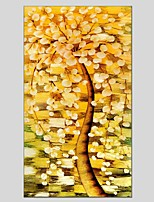 Oil Paintings  Money Tree Style Canvas Material With Wooden Stretcher Ready To Hang Size60*90CM and 50*70CM .