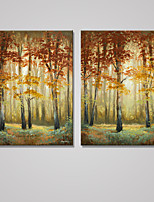 Stretched Canvas Print Landscape Pastoral,Two Panels Canvas Vertical Print Wall Decor For Home Decoration