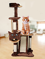 Cat Toy Luxury Climbing Rack Interactive Scratch Pad Durable Wood Plush Coffee