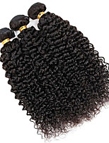 Natural Color Hair Weaves Brazilian Texture Kinky Curly 12 Months 3 Pieces hair weaves