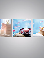 Stretched Canvas Prints Still Life Contemporary Art for Spa Shop Decoration