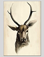 Oil Paintings  Deer Style Canvas Material With Wooden Stretcher Ready To Hang Size60*90CM and 50*70CM .
