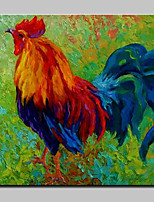 Hand Painted Modern Abstract Animal Cock Oil Painting On Canvas Wall Art Pictures For Home Decoration Ready To Hang