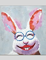Oil Paintings  Modern Rabbit Style Canvas Material With Wooden Stretcher Ready To Hang Size60*60CM and 70*70CM .