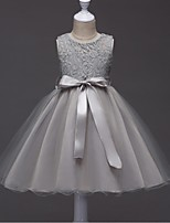 Ball Gown Short / Mini Flower Girl Dress - Organza Jewel with Lace Sash / Ribbon Ruching