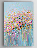 Hand-Painted  Abstract Flowers Oil Painting With Stretcher For Home Decoration Ready to Hang
