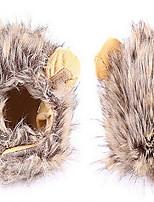 Perruque de crinière au lion pour le costume de chien et de chien Animal adaptable, lavable, confortable, fantaisie, lion, cheveux