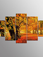 Impression sur Toile A fleurs/Botanique Moderne,Cinq Panneaux Toile Toute Forme Imprimer Art Décoration murale For Décoration d'intérieur