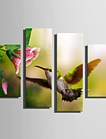 E-HOME Stretched Canvas Art Spring Flowers And Birds Decoration Painting Set Of 4