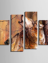 E-HOME Stretched Canvas Art Wolves in The Woods Decoration Painting Set Of 4