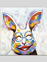 Oil Paintings Modern Rabbit Canvas Material With Wooden Stretcher Ready To Hang Size60*60CM and 70*70CM .