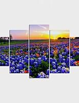 Estampados de Lonas Esticada Floral/Botânico Moderno,5 Painéis Tela Qualquer Forma Impressão artística Decoração de Parede For Decoração
