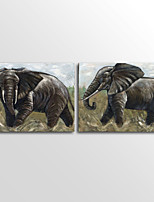Canvas Print Animal Elephant Classic Two Panels Canvas Horizontal Print Wall Decor For Home Decoration