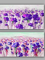 100% Hand-Painted Floral Two Panels Canvas Oil Painting For Home Decoration