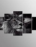 Estampados de Lonas Esticada Animal Moderno,5 Painéis Tela Qualquer Forma Impressão artística Decoração de Parede For Decoração para casa