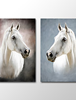 Canvas Print Animal Modern White HorseTwo Panels Canvas Vertical Print Wall Decor For Home Decoration