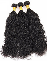 Natural Color Hair Weaves Peruvian Texture Water Wave 12 Months 3 Pieces hair weaves