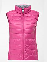 Femme Manches courtes Golf Hauts/Tops Respirable Matériaux Légers Confortable Rouge de Rose Rouge Golf Sport de détente