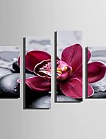 Floral/Botânico Moderno,4 Painéis Tela Vertical Impressão artística Decoração de Parede For Decoração para casa