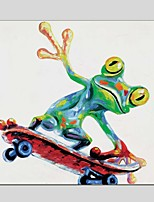 Oil Paintings  Cute Frog Style Canvas Material With Wooden Stretcher Ready To Hang Size60*60CM and 70*70CM .