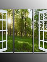 Impresiones Fotográficas Paisaje Modern,Tres Paneles Lienzos Horizontal lámina Decoración de pared For Decoración hogareña