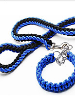 Upgraded Double Color Collar Eight Strand Rope P Chain Pet Traction Rope Big Dog Chain Dog Rope