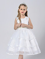 Girl's Casual/Daily School Solid Dress