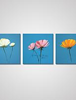 Estampados de Lonas Esticada Floral/Botânico Moderno Pastoril,3 Painéis Tela Horizontal Impressão artística Decoração de Parede For