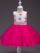 Ball Gown Knee-length Flower Girl Dress - Satin Tulle Jewel with Bow(s) Embroidery Sash / Ribbon