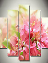 Art Print Floral/Botanical Modern Five Panels Horizontal Print Wall Decor For Home Decoration