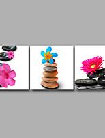 Отпечатки на холсте Цветочные мотивы/ботанический Modern,3 панели Холст Горизонтальная Печать Искусство Декор стены For Украшение дома