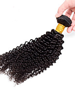 Natural Color Hair Weaves Indian Texture Kinky Curly 12 Months 1 Piece hair weaves