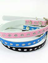 /Colorful PU kitten collars Pet Suppies Wholesale cat dog harness Pet Christmas Dog Accessories PU style transparent style
