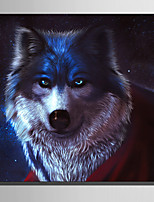 E-HOME Stretched Canvas Art Wolf in The Night  Decoration Painting One Pcs