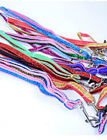 Width 1.0  High-quality fashion Gold ribbon Dog Collars Nylon Material dog traction rope cat dog harness Pet Supplies Wholesale sales