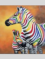 Oil Paintings  Zebra Style Canvas Material With Wooden Stretcher Ready To Hang Size60*60CM and 70*70CM .