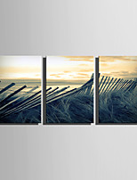 E-HOME Stretched Canvas Art  Wooden Fence Landscape Decoration Painting Set Of 3