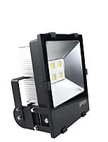 Luzes LED de Cenário Magic LED Light Ball Party Disco Club DJ Mostrar Lumiere LED Crystal Light Projetor Laser 50W - 50-60 - 1 (ON/OFF)