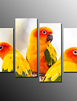 Photographic Print Animal Modern,Four Panels Canvas Any Shape Print Wall Decor For Home Decoration