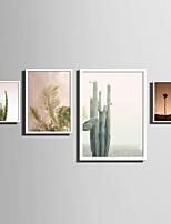 E-HOME® Framed Canvas Art   Simple Natural Scenery And Plant Series (7) Theme Series Framed Canvas Print One Pcs